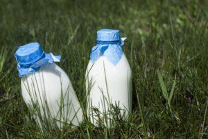 芝生に置いた牛乳